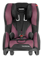Recaro Young Expert Plus in Violet, Isofix possible