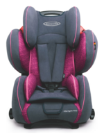 Bundle Storchenmühle SP Pro Rosy with Car Seat Protector and Summercover